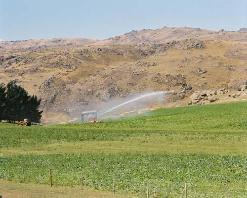 New Zealand's driest soils