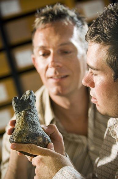 Examining a theropod bone