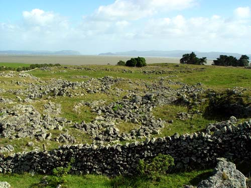 Ōtuataua stonefields