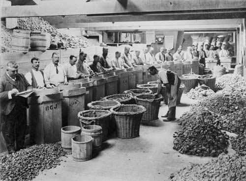 Gum warehouse