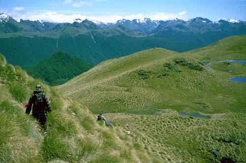 Tramping New Zealand South Island