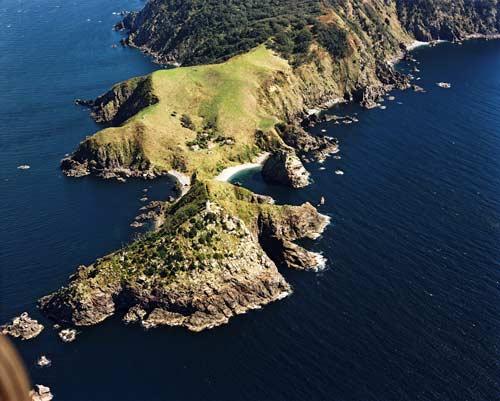 Cuvier Island