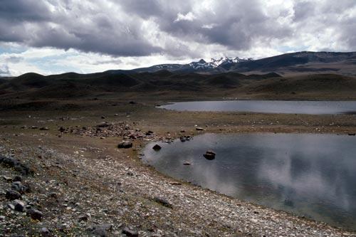 Ephemeral wetland, Lake Tekapo