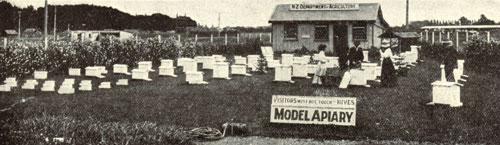 Model apiary, Christchurch International Exhibition, 1906–7