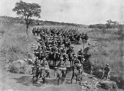 Horses in the South African War