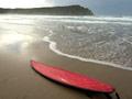 Flax surfboard