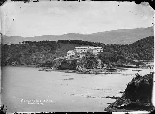 Quarantine Island, Otago Harbour