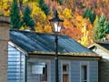 Autumn in Arrowtown