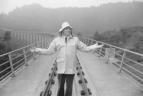 The new Hāpuawhenua viaduct
