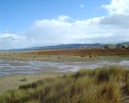 Pōrangahau estuary