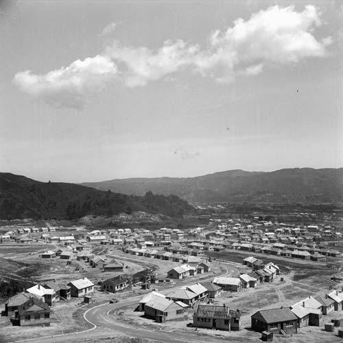 Naenae state housing