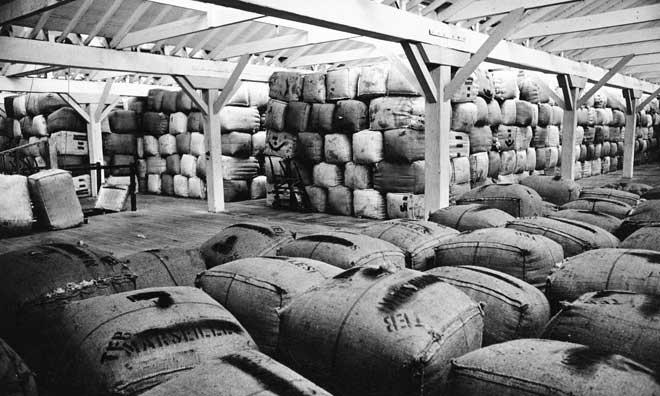 Wool stockpile, 1967