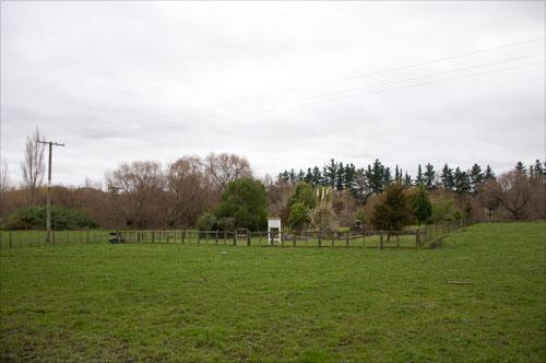 Old Frasertown cemetery