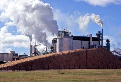 tasman pulp and paper mill kawerau � economic history