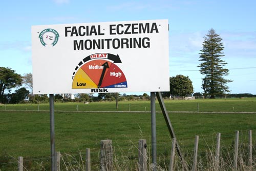 Facial eczema monitoring