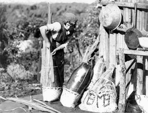 Preparing pōhā for transportation
