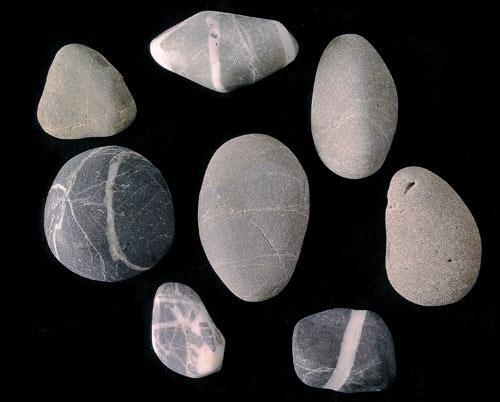 Greywacke pebbles with quartz veins