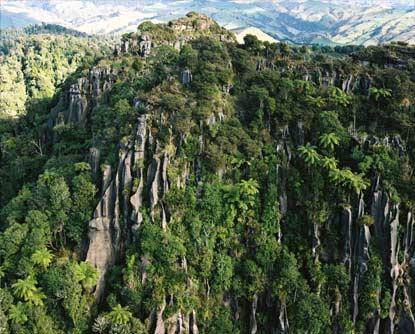 Limestone cliffs, Waitomo