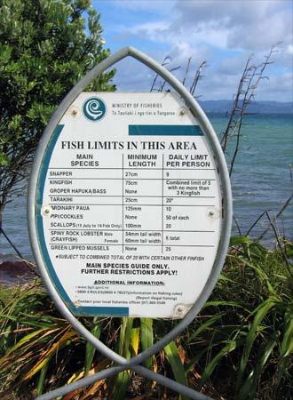 Fish and shellfish limits