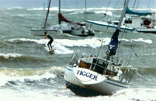 Surfing in a storm, Hauraki Gulf