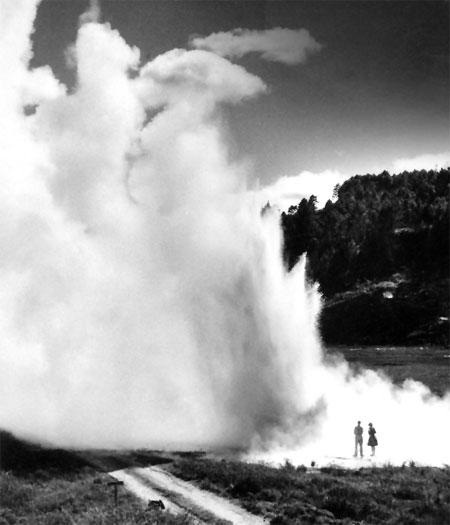 Ōrākei Kōrako geyser
