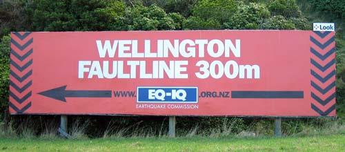 The Wellington fault