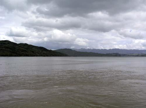 Hokianga, 2003