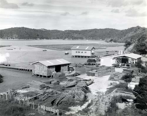 Oyster farm, 1978