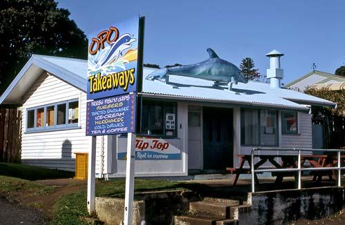 Fish shop, Opononi