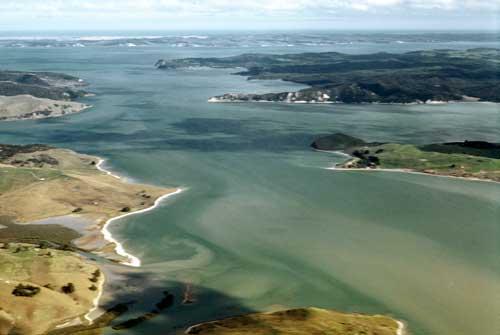 Kaipara Harbour