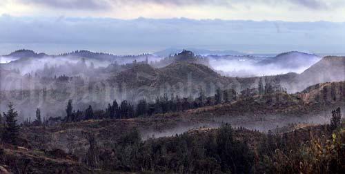 Mist, Rotorua
