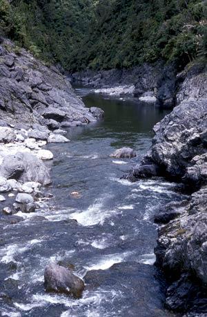Ōtaki River gorge