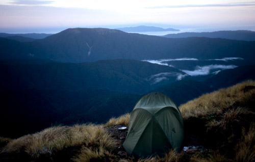 Field Peak