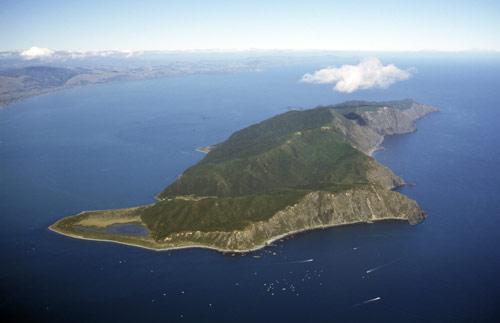Overlooking Kāpiti Island