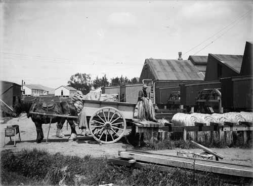 Manawatū flax mill