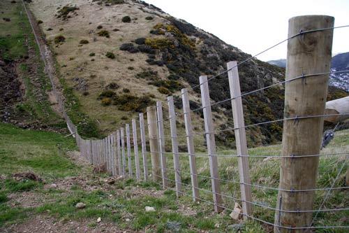 North Island Wire Fence Farm Fencing Te Ara