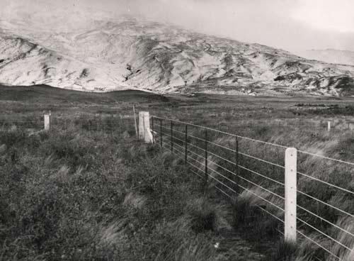 Concrete And Steel Fence Farm Fencing Te Ara