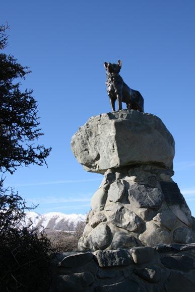 Border collie statue