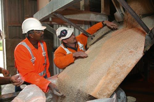 Granulated superphosphate fertiliser is inspected ...