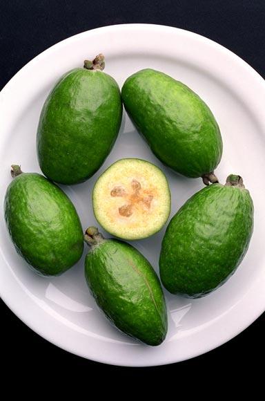 Green Exotic Fruits Feijoa fruit