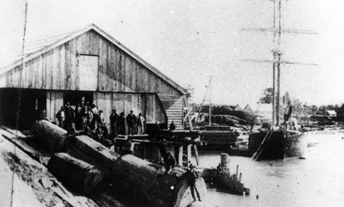 Helensville mill