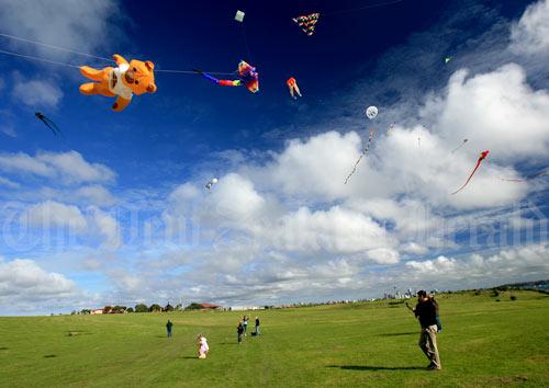 Kites over Bastion Point