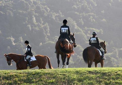 Horse trials, Clevedon