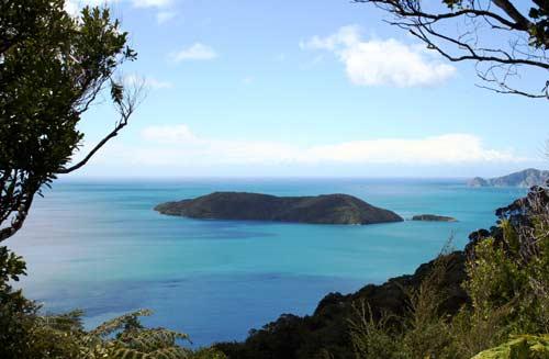 Motuara Island, Queen Charlotte Sound