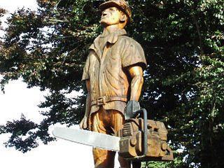 Pine man, Tokoroa