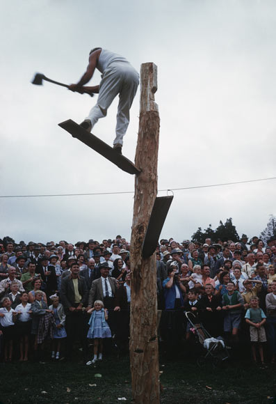 Wood-chopping competition