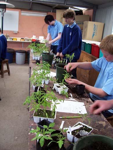 Horticulture school subjects in high school