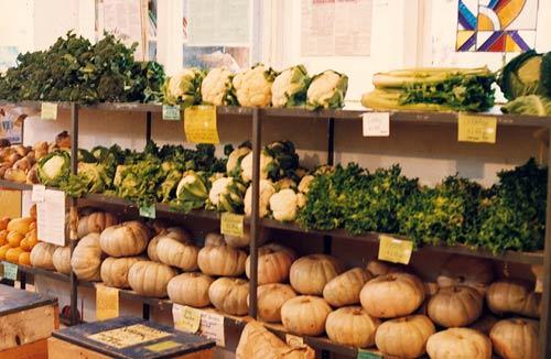 Winter produce, Organic Food Co-op