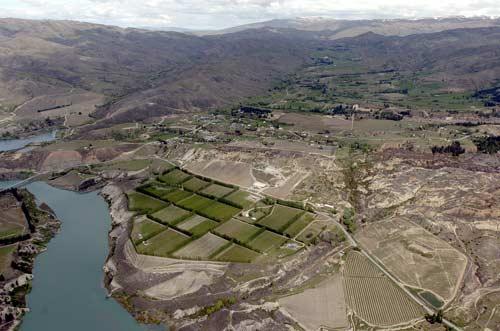 Lake Dunstan and vineyards