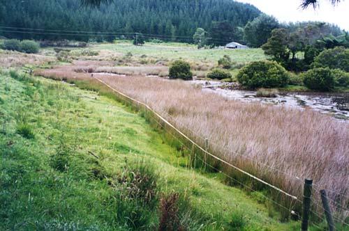 Clean Streams Accord